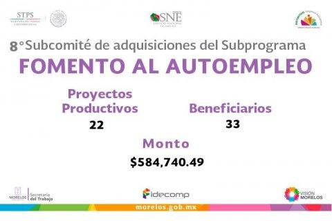 "<a href=""/8-subcomite-de-adquisiciones-del-Subprograma-Fomento-al-autoempleo""> 8° Subcomité de Adquisiciones del Subprograma Fomento al Autoempleo</a>"